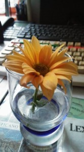 körbe táncolt virág.1_n